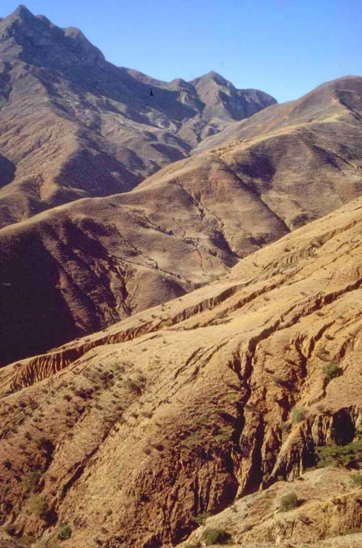 Desertification in the inter-Andean valleys