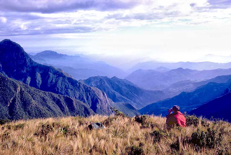 Paramo, the Ecological Reserve of Chaparri, Peru