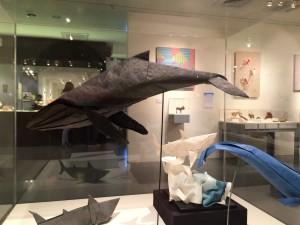 """Humpback Whale"" by Daniel Robinson"